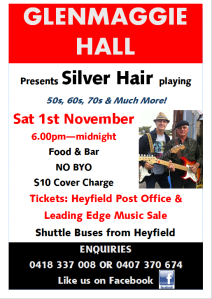 Silver Hair Poster